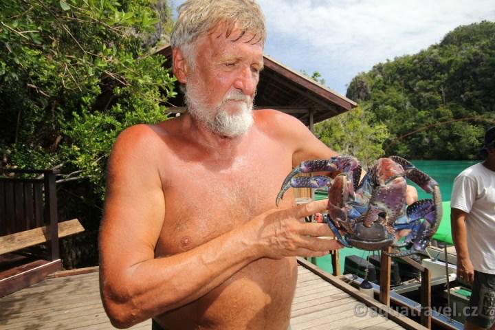 Palmový krab z Pianema
