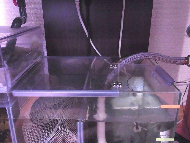 水槽(濾過槽)に設置した開閉式の自作フタ 閉じた状態