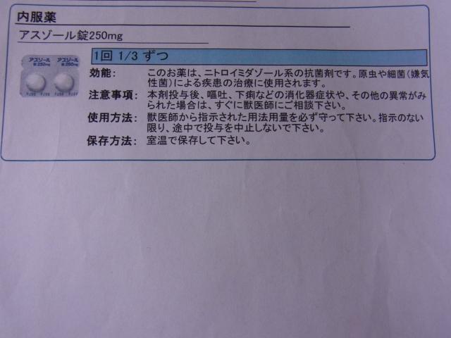 動物病院の薬の説明書