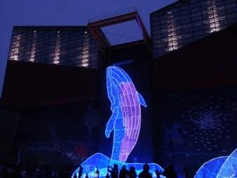 大阪が誇る水族館「海遊館」!巨大水槽やジンベエザメが凄い!