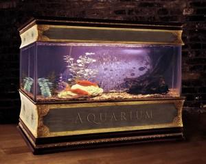 アクアリウム水槽のオススメ・選び方-熱帯魚・金魚・亀・水草に!