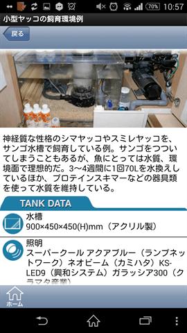 飼育例(タンクデータ)2