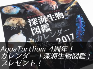 【AquaTurtlium 4周年記念】カレンダー「深海生物図鑑」2017をプレゼント!