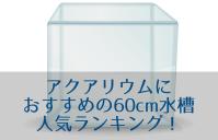 アクアリウムにおすすめの60cm水槽人気ランキング!