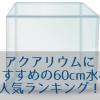 アクアリウムにおすすめの60cm水槽人気ランキング!100超の水槽から選抜