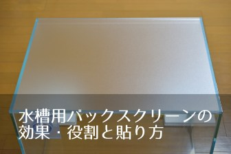 水槽用バックスクリーンの効果・役割と貼り方を画像と動画で解説!
