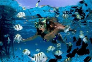 best scuba diving in the caribbean islands