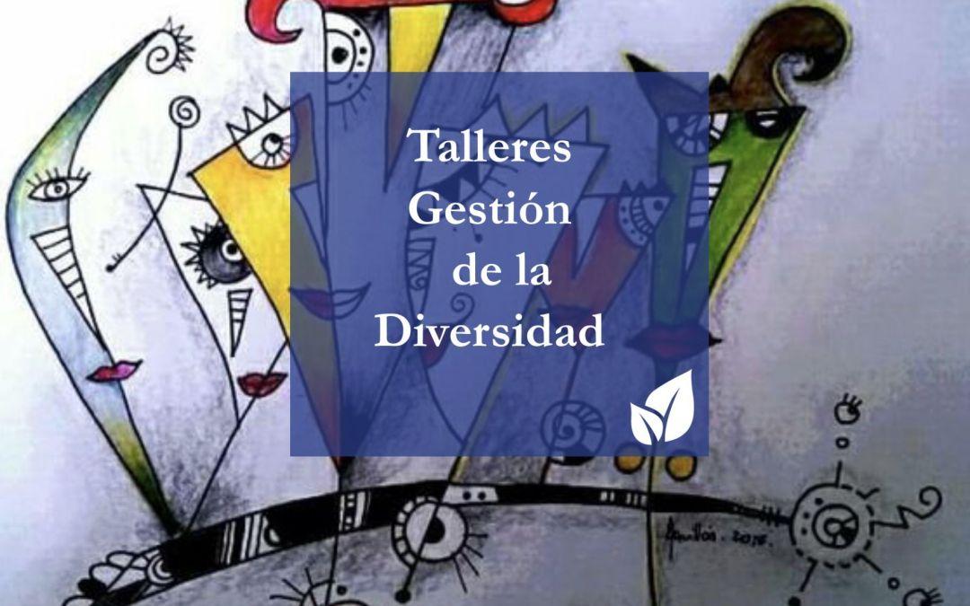 Talleres sobre Gestión de la Diversidad en las organizaciones