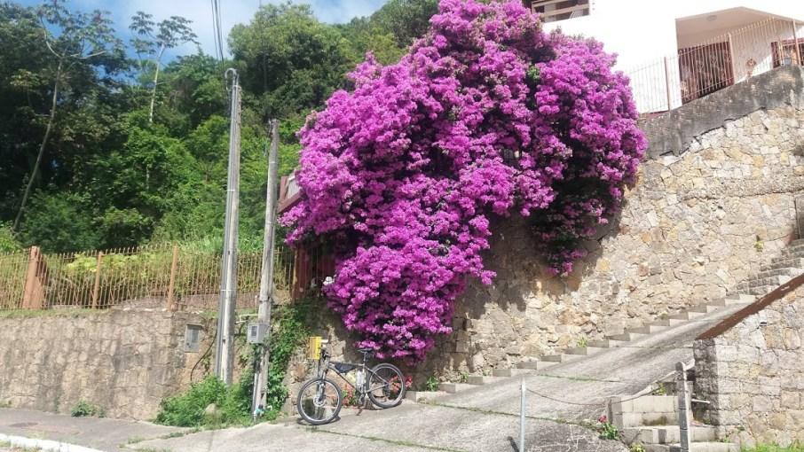 02_Amor_vida_de_bike_Luciana_Vieira
