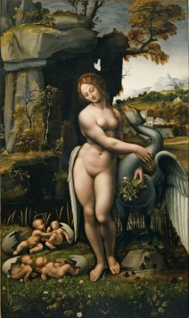 Leda francesco-melzi-15082