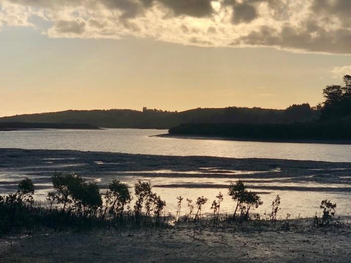 Nueva Zelanda: Desembocadura del Topuni River, en Port Albert Domain.