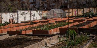 Visión general del Huerto Urbano de Lucero