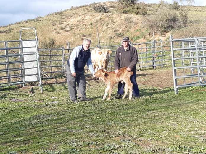 Covid-19: Los agricultores y ganaderos más frágiles que nunca