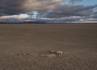 España desertificación sequías
