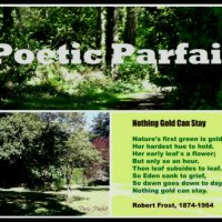 "►Greek Mythology: ""Flowers and Plants (I)"" / Poetry: Frost´s ""Nothing Gold Can Stay"", at Poetic Parfait 💫.-"