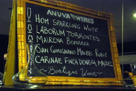 vinhos argentinos anuva