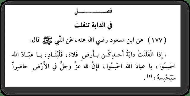 ibn tejmij i ingely 640x323 - 557. Обращение к присутствующим ангелам