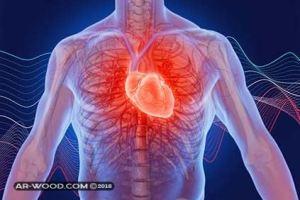 خفقان القلب بعد الاكل عند الحامل