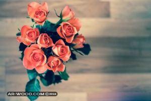 كلام في الحب بالدارجة المغربية