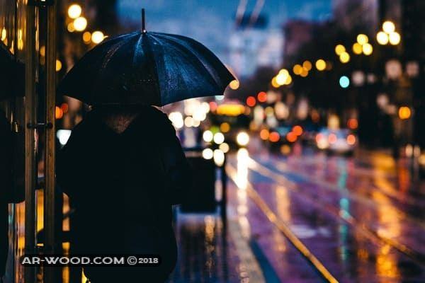 تفسير حلم نزول المطر على شخص