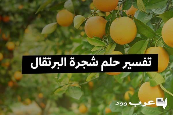 تفسير حلم شجرة البرتقال