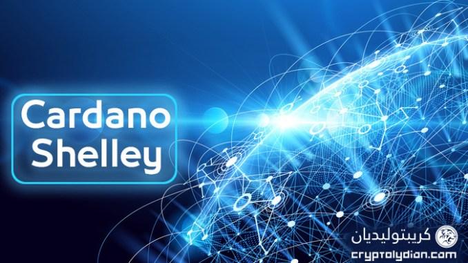 كاردانو: تم إجراء الاختبارات الأولى لشبكة شيلي بنجاح