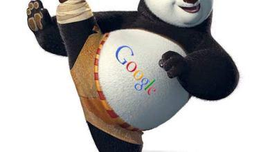 صورة الدليل الشامل للمبتدئين : ما هو جوجل باندا Google Panda ؟