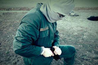 الحموشي يتحرك في قضية المعهد الإسرائيلي للتدريب العسكري