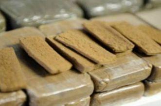 الجيش والبحرية يطيحان بشبكة لتهريب المخدرات بالشمال