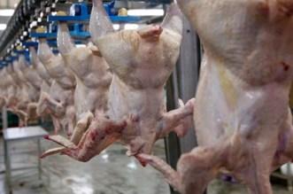"""لهذه الأسباب لن يشتري المغاربة الدجاج الأمريكي """"الحلال"""""""