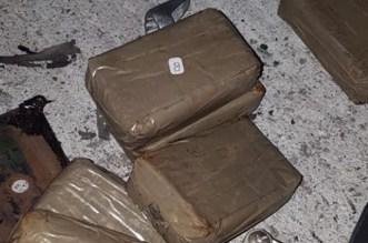 ميناء طنجة.. إحباط محاولة تهريب 17كيلوغراما من المخدرات
