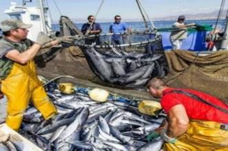لجنة الخارجية تصوت بالإجماع على قانون الصيد البحري مع الاتحاد الأوربي