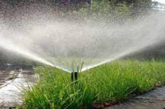 صفقات العشب تلتهم المليارات وتهدد الرباط بانقطاع الماء