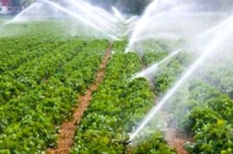 """""""البيجيدي"""" يطالب بإعداد برنامج مستعجل للاقتصاد في الماء"""