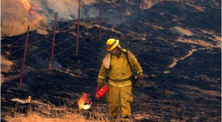 ماليزيا مستعدة لمساعدة إندونيسيا في اخماد حرائق الغابات