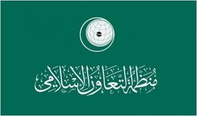 منظمة التعاون الإسلامي تدعو إلى منع وتجريم كافة أشكال العنف ضد المرأة