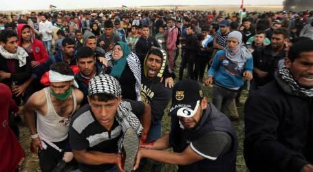 40 إصابة خلال مواجهات عنيفة مع قوات الاحتلال في الضفة المحتلة