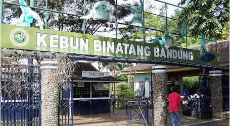 أشهر المعالم السياحية في باندونغ