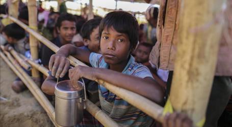 الظروف في ميانمار لا تسمح بعودة واسعة للروهنغيا