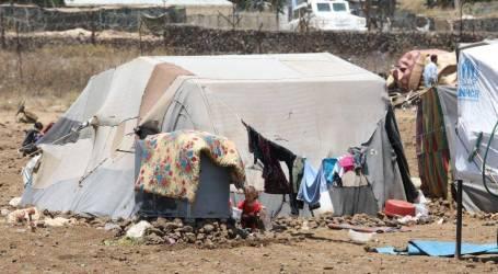 تقرير دولي: 56 مليون شخص بالعالم بحاجة للمساعدات الغذائية