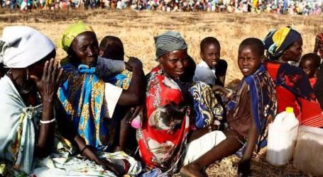 الأمم المتحدة تحذر من أزمة غذائية حادة في دولة جنوب السودان