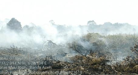حريق هائل يلتهم أراضي الخث في غرب آتشيه البالغة مساحتها 1.5 هكتار
