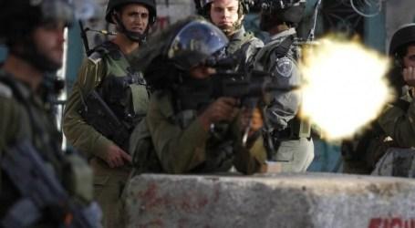 قوات الاحتلال تطلق النار تجاه صيادي العصافير شمال غزة