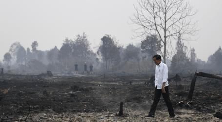 الوزير: نجحت إندونيسيا في تقليل حرائق الغابات إلى الحد الأدنى
