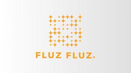 مشروع fluz fluz
