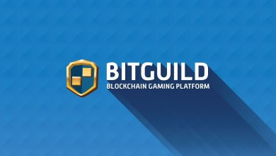 مشروع bitguildd