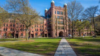 جامعة ييل تستثمر في العملات الرقمية المشفرة