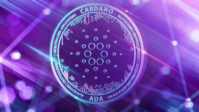 كاردانو تتعاون مع شركات عالمية في التمويل الرقمي لتشكيل السياسات التنظيمية