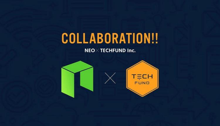 تعرف على تفاصيل شراكة TheFund مع شبكة النيو (NEO)