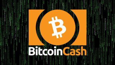 """""""روجير فير"""" يطلق صندوقاً استثمارياً بقيمة 200 مليون دولار لدعم شبكة بيتكوين كاش"""
